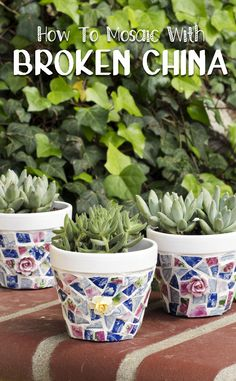 DIY Mosaic Pots with Broken China - instructions with photos showing how to break flea market plates, glue tiles to terra cotta pots, mix and grout mosaic, and how to buff. Includes bonus video for lopping china roses off knick-knacks! Fun for planting succulents!