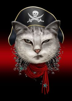PORTRAIT OF A PIRATE CAT  PORTRAIT OF A PIRATE CAT Gallery quality print on thick 45cm / 32cm metal plate. Each Displate print verified by the Production Master. Signature and hologram added to the back of each plate for added authenticity & collectors value. Magnetic mounting system included.  EUR 41.00  Meer informatie