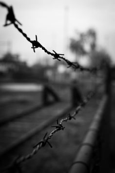 barbed wire barb wire black and white -  barbed wire barb wire black and white free stock photo Dimensions:3160 x 4764 Size:4.92 MB  - http://www.welovesolo.com/barbed-wire-barb-wire-black-and-white/