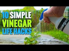 10 Awesome Vinegar Life Hacks you should know. - YouTube