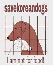 Stop the Korean Dog Meat Trade!