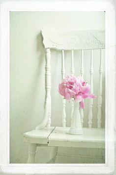 flowers & white chair