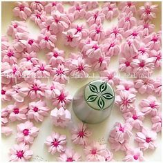 Perfect tip for making beautiful icing flowers on cakes, cupcakes and cookies. Icing Flowers, Cookie Decorating, Biscuits, Projects To Try, Cupcakes, Cookies, Amy, Beautiful, Decorated Cookies