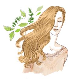 Utiliser les poudres de plantes pour le soin des cheveux a79ed4caa324
