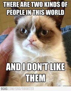 Hahahahaha this is me in those days #grumpycat #lmao