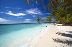 Billionaires Investors line up to buy their slice of the Maldives! Read more at: http://www.eturbonews.com/53410/billionaires-investors-line-buy-their-slice-maldives