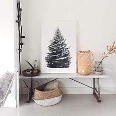 Design Jungle Dennenboom poster - groen