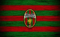 Download wallpapers Ternana Unicusano Calcio, Serie B, 4k, football, wooden texture, red green lines, italian football club, Ternana FC, logo, emblem, Terni, Italy
