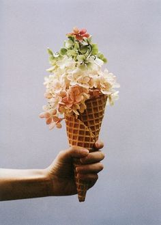 Amy Merrick's floral Ice Cream for Kinfolk Magazine. Shot by Parker Fitzgerald. Ice Cream Flower, Cream Flowers, Beautiful Flowers, Big Flowers, Exotic Flowers, Flowers Garden, Summer Flowers, Purple Flowers, Deco Floral
