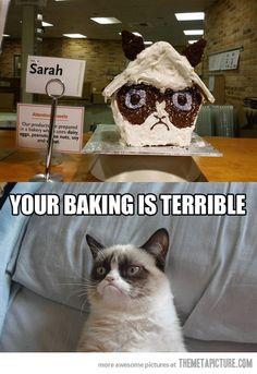 Grumpy Cat - Terrible baking