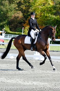 leaders after dressage: Susan Beebee and Wolf at Fair Hill CCI**