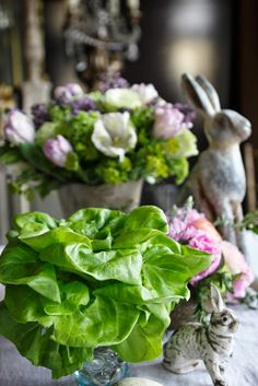 Romancing the Home  using heads of butter lettuce