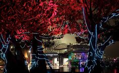 From Friday May 25 to Monday June 11, Sydney lights up for the Vivid festival. The Sydney Opera House and the surrounding area will be lit up with light sculptures, projections on to existing facades. Pictures by Steven Siewert and Dallas Kilponen. https://www.facebook.com/intelaustralia/app_118327994971117