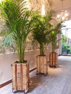 This Pin was discovered by sim Indoor Garden, Garden Art, Indoor Plants, Garden Design, Wooden Planters, Diy Planters, House Plants Decor, Plant Decor, Garden Planter Boxes