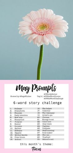 Get your ideas blooming in May! We're continuing the Year to a Better You with the May Story Challenge prompts. Whatever you're working toward, May is the time to refocus, recenter, and get back on track! 6 Word Stories, Six Word Story, Journal Prompts, Journal Ideas, Poetry Prompts, Journal Inspiration, Journals, Me Time, No Time For Me
