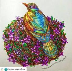 Colouring...bird in nest