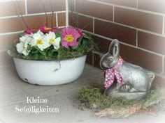 Frühling Spring Ostern Easter
