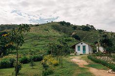 Peèle e Yentl: vida na roça - Shutterstock Blog Português