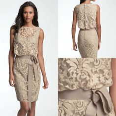 Gorgeous lace dress. Perfect for the mother of the bride or groom
