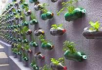 garden ideas on a budget