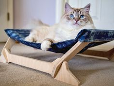 Peach Pet Provisions' cat lounger, discovered by The Grommet, transforms a traditional pet accessory into a beautiful accompaniment to your home decor