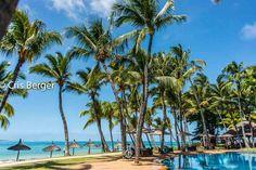 Ilhas Maurício, por Cris Berger Hotel One And Only Le Saint Geran  Praia, Sol, Mar, Vinhos, sabores, aromas, rede, coqueiros, bem estar, conforto, descanso, luxo.