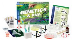 www.toytoy.land // With great experimentation your kids will learn and perhaps even love labs!
