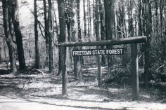 The Fall River-Freetown State Forest is owned by the state and maintained by the Department of Conservation and Recreation. A 323-acre parcel was purchased for $4500 in 1934. Most of the other acreage was purchased in 1935. Currently the forest is 5,441 acres and has 50 miles of unpaved roads and trails.     Freetown was purchased in 1659 from the Wampanoag Tribe and became a town in 1683.  The Native Americans in the area alrea