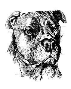 Snapback Hats for Men /& Women Dog Maltese Lifeline Embroidery Cotton Black