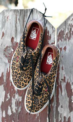 cca350c4cf Leopard Era 59 available now. Leopard Vans