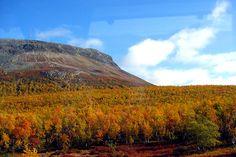 Saana fjell, Finland-photo by Pentti Koivu