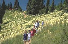 We'll be hiking the Danny On Trail in Whitefish, #Montana