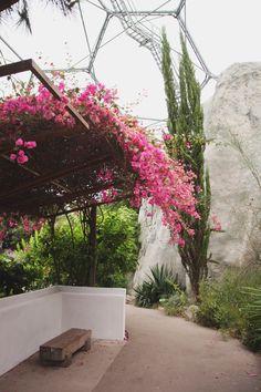 Eden Project Part 2 – The Mediterranean Biome // aprileveryday.com
