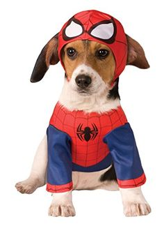 Every Spiderman need dog in spiderman costume. Dog costume spiderman is greatest for halloween events and similar. Check examples by clicking on image. Costume Spider-man, Costume Chien, Pet Costumes, Family Costumes, Costume Ideas, Dog And Owner Costumes, Chihuahua Costumes, Children Costumes, Costume Makeup