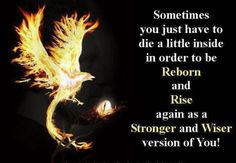 Discover and share Phoenix Rebirth Quotes. Explore our collection of motivational and famous quotes by authors you know and love. Wisdom Quotes, Quotes To Live By, Me Quotes, Motivational Quotes, Inspirational Quotes, Rebirth Quotes, Phoenix Quotes, Bird Quotes, Deep Thoughts