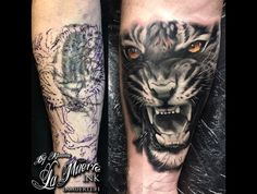 Tiger Cover Up Tattoo Realistic Portrait Black White Color Forearm