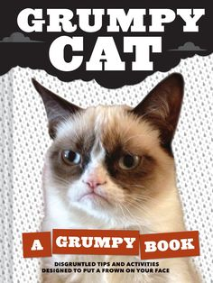 NEW grumpy cat pics | ... New Zealand book community: Grumpy Cat - A Grumpy Book NZ Release