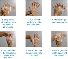 Hands must be washed every hour or whenever dirty. When washing hands wash in between fingers and up the forearm when handling food.