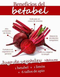 Beneficios de la  betabel (betarraga o remolacha)