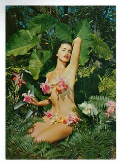 Large 9x6 1 2 Vintage 1950s Original Postcard Pin Up by Bunny Yeager   eBay