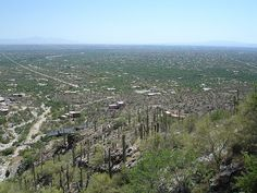 View...  Mt Lemmon, AZ  eriwyn (c) 2008