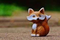 Animal: Find best latest Animal in HD for your PC desktop background & mobile phones.