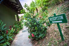 Tikivillas Rainforest Lodge, Costa Rica