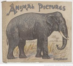 Animal pictures,  collections numérisées dans Gallica, Fonds Heure Joyeuse (Paris)