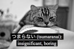 つまらない : insignificant, boring