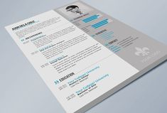28 Free CV Resume Templates ( HTML PSD & InDesign ) | Bashooka | Web & Graphic Design