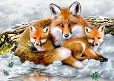 diamond embroidery Fox family needlework diamond mosaic pictures of rhinestones hobbies and crafts,diamond painting animals Cross Paintings, Animal Paintings, Art Fox, Animals Beautiful, Cute Animals, Mosaic Pictures, Paint By Number Kits, 5d Diamond Painting, King Charles Spaniel
