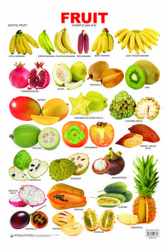 """23 Things You Probably Didn't Know About The Plant Kingdom """"Fruit"""" is a botanical term and """"vegetable"""" is a culinary term, so certain vegetation such as tomatoes, green beans, eggplants, and cucumbers could be called either fruits or vegetables. Food Vocabulary, English Vocabulary, Fruit And Veg, Fruits And Vegetables, Winter Vegetables, Fruit Names, Food Charts, English Food, Learn English"""