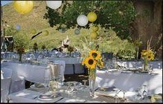 Special wedding in croatia Istria