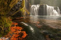 Lower Lewis Falls.  Washington.  by Joel Brady-Power.